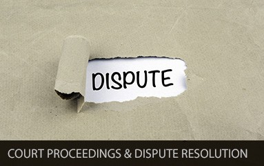 Court proceedings and dispute resolution